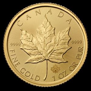 Gold Maple Leaf 2015
