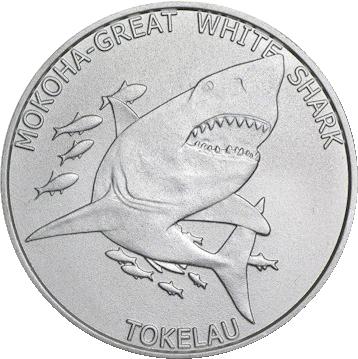 Tokelau Mokoha-Great White Shark