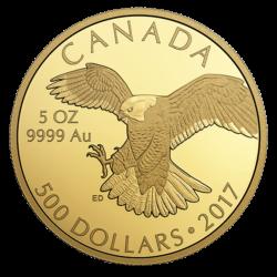 Goldmuenze-falke-2017-5oz-canada