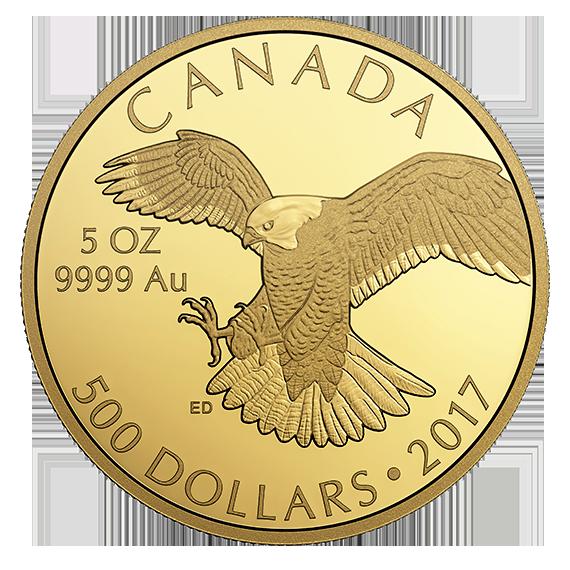Goldmünze aus Kanada: 5oz Falke mit nur 99 Stück Auflage