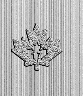 magnificent maple leaf sicherheitsfeature auf 10 unzen muenze
