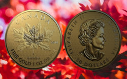 Maple Leaf 2018 Fractional Set — Limitiertes Goldmünzen-Set aus Kanada