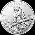 Canadian Wildlife Puma Silbermünzen kaufen