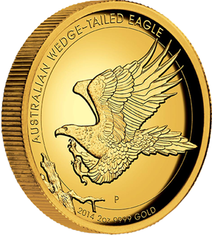 australian-wedge-tailed-eagle gold