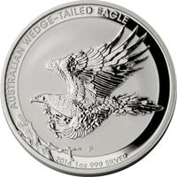 australian-wedge-tailed-eagle silver