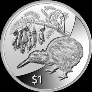 kiwi silver