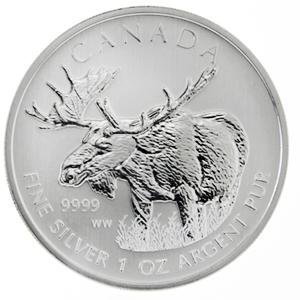 Elch Kanada - Canadian Wildlife Moose der Royal Canadian Mint