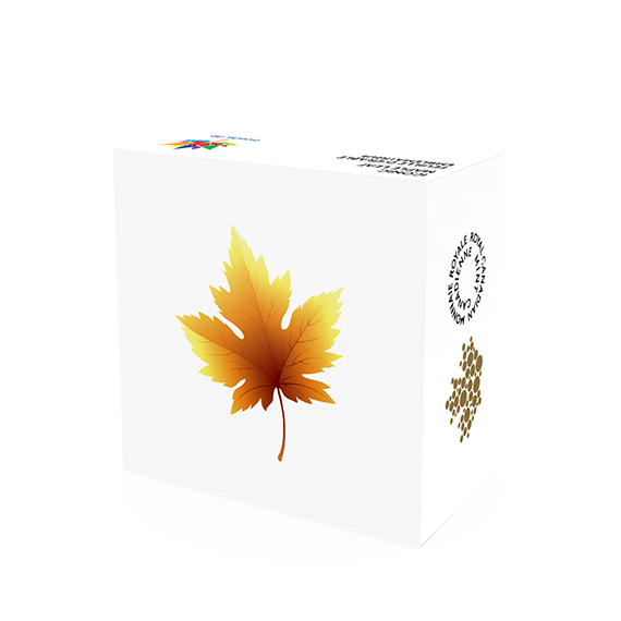 Maple Leaf 2017 99999 Goldmünze — Schachtel — Canada 150 Iconic Maple Leaf Box